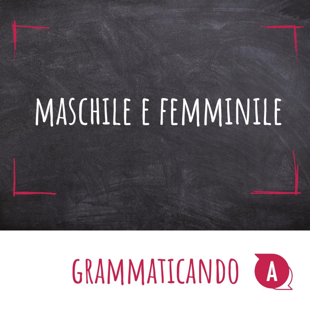 Grammaticando - MASCHILE E FEMMINILE