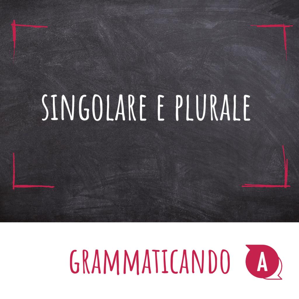 Grammaticando - IL SINGOLARE E IL PLURALE